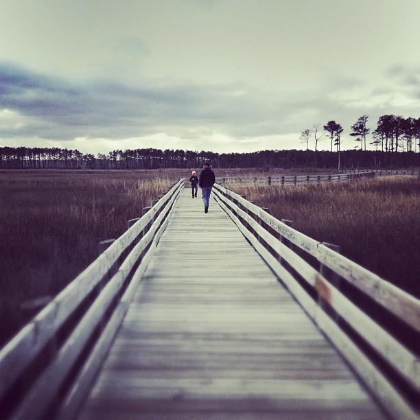 5. Ragged Island boardwalk