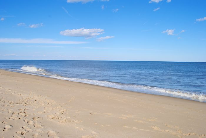 7. Take a scenic drive and picnic on the beach