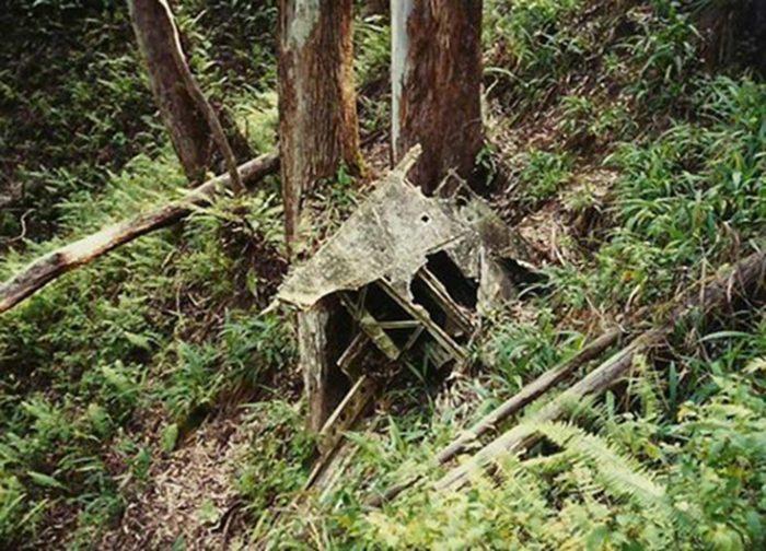 7. Aiea Loop Trail