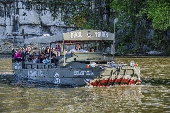 7. Chattanooga Ducks - Chattanooga