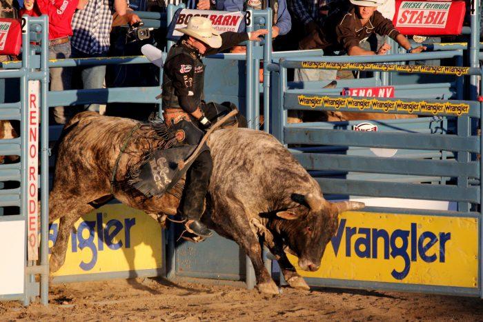 10. The Cowboy