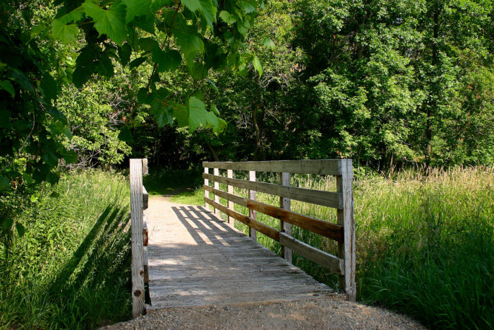 7. Trail bridge surrounded by beautiful forests in one of North Dakota's state parks