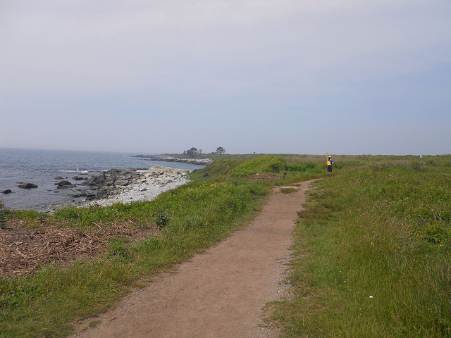 2. Ocean View Loop Trail at Sachuest Point Refuge, Middletown