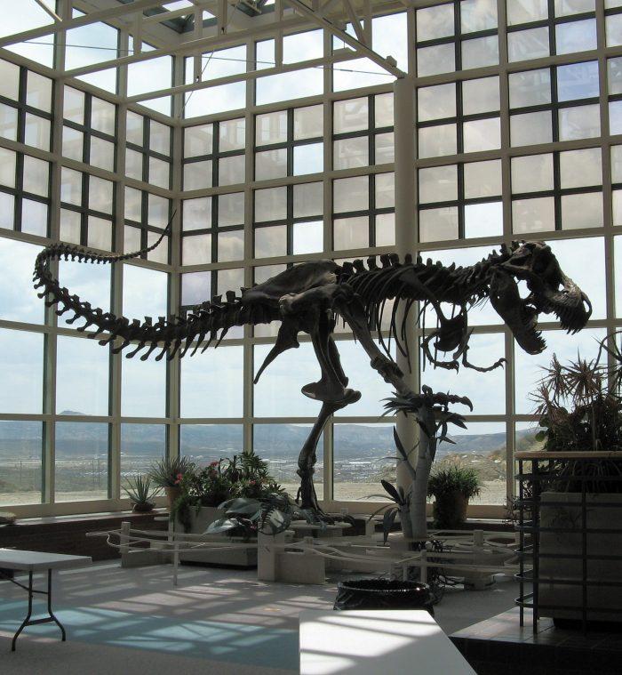 7. Natural History Museum, Rock Springs