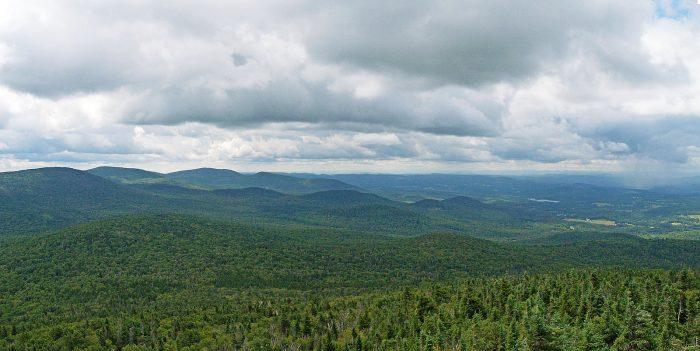 1.  L.R. Jones State Forest, Plainville