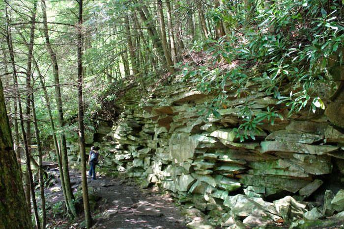 10. Swallow Falls State Park Trail - Oakland