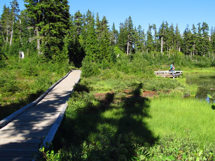 1. Picture Lake Path, North Cascades National Park (Heather Meadows area)