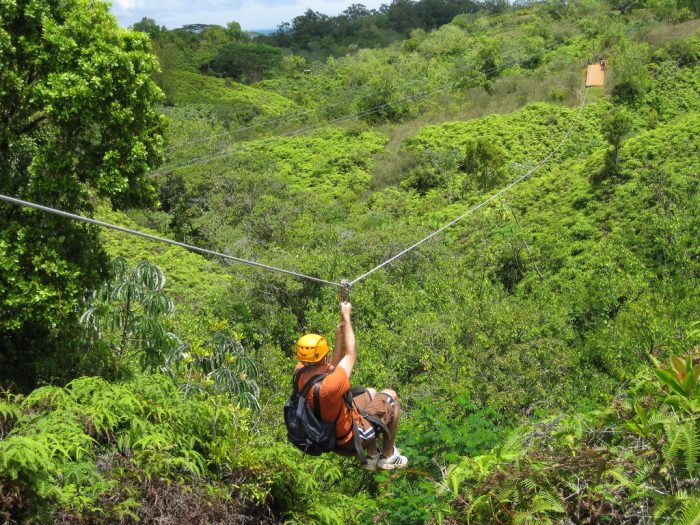 8. Soar through the jungle on a ziplining tour.