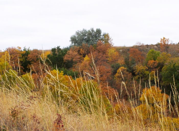 3. Lewis and Clark Trail: Council Bluffs to Onawa