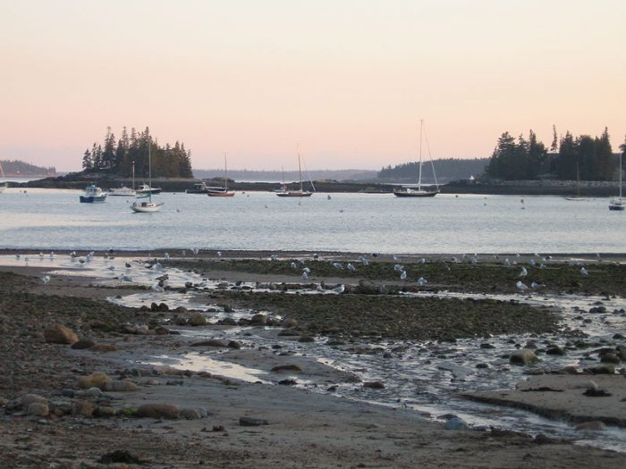 1. Maine's dramatic tidal changes