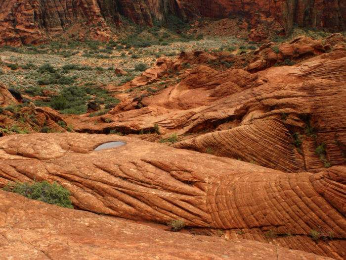 5. Petrified Dunes Trail, Snow Canyon State Park