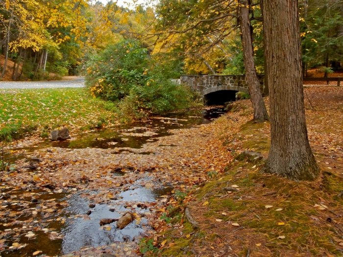 11. The Mount Norwottuck and Horse Caves trails in Mount Holyoke State Park offer challenging hikes that are filled with scenic spots.