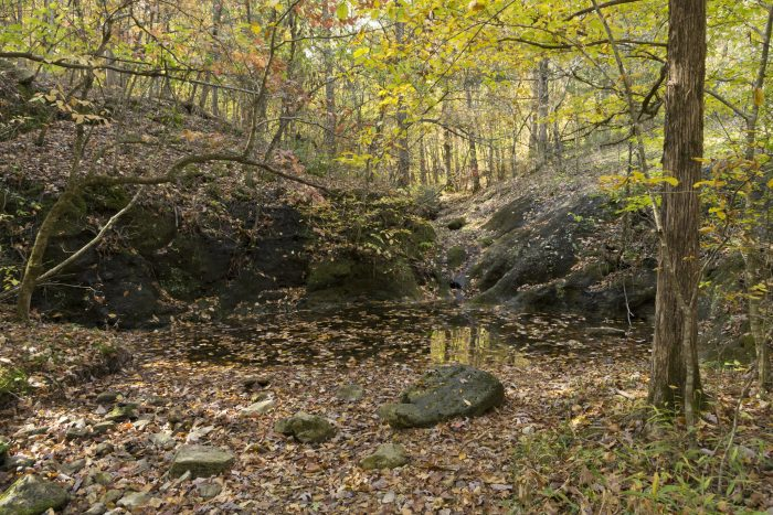 The hike itself follows a creek bed, and the walk is spectacular: