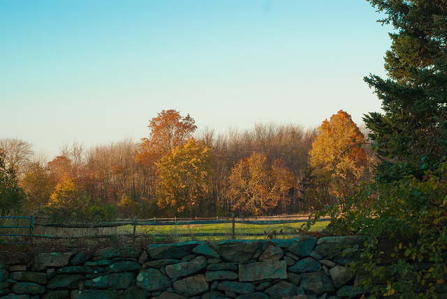 6. This farm with fall foliage is a charming New England photo.