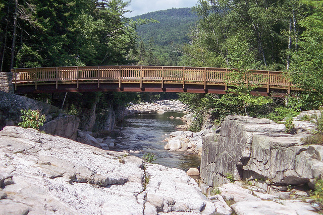 5. Rocky Gorge Foot Bridge, Albany