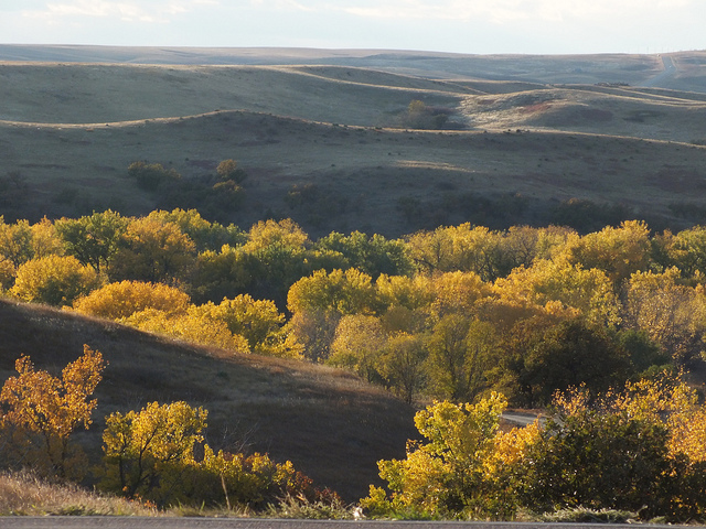 6. Fall. The colors of South Dakota in the fall are unbeatable and the weather is perfect!