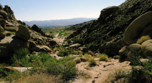These 8 Trails In Nevada Will Lead You To Unforgettable Places