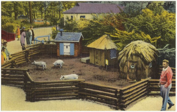 4. The Detroit Zoo was the first zoo in the United States to feature cage-less, open exhibits that allowed more freedom for animals to roam.