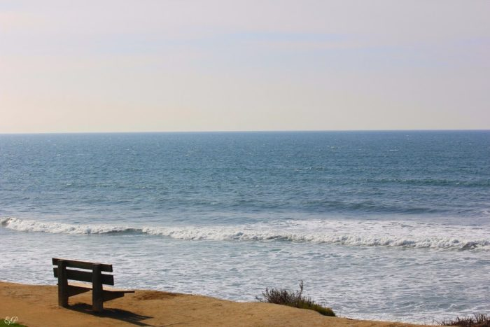 8. Sit back and relax on this wooden beach bench while you take in the captivating scenery at Torrey Pines.