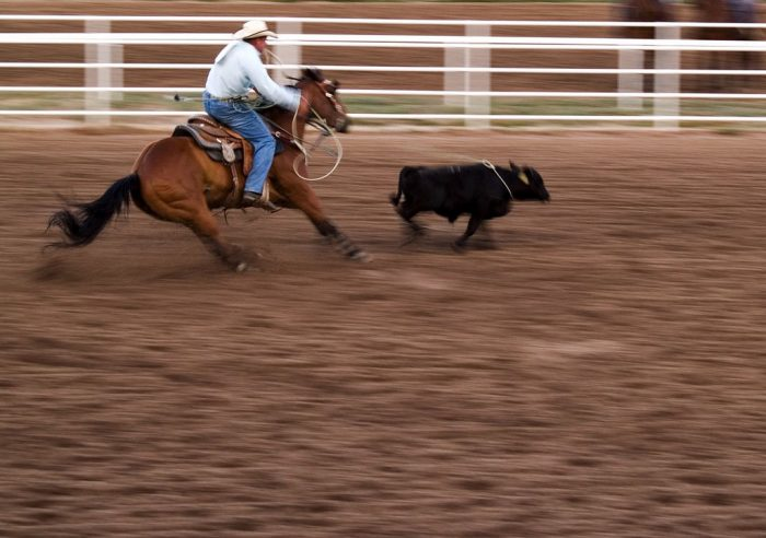 1. Frontier Days In Cheyenne