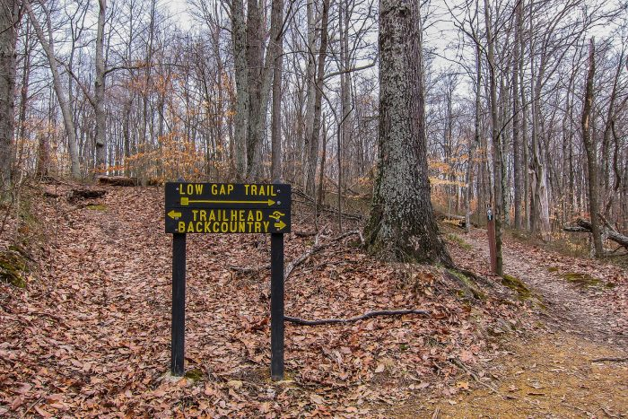 2. Low Gap Trail - Morgan Monroe State Forest (Martinsville)