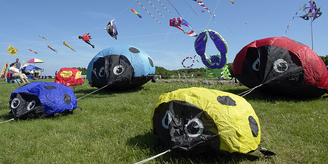 14. There are unique festivals and events year-round.