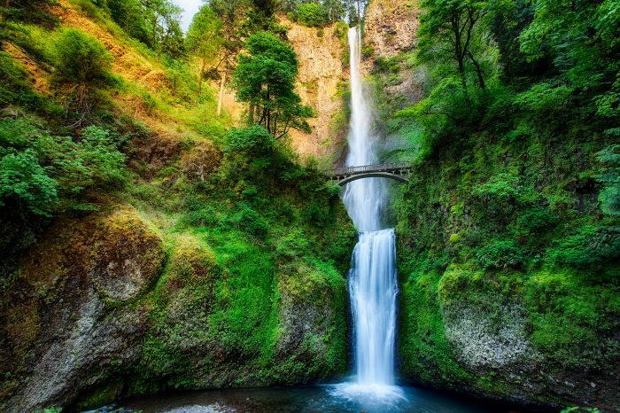 2. Make a stop at the magnificent Multnomah Falls.