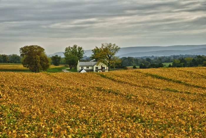 5. This photo of Mumma Farm at Antietam Battlefield looks like it's straight out of a postcard.