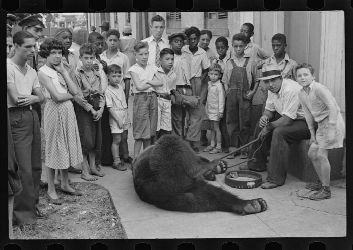 13. A street-side bear performance in New Orleans.