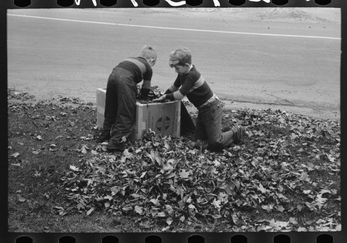 8.  Boys gathering leaves into cardboard box on a front lawn in Bradford.