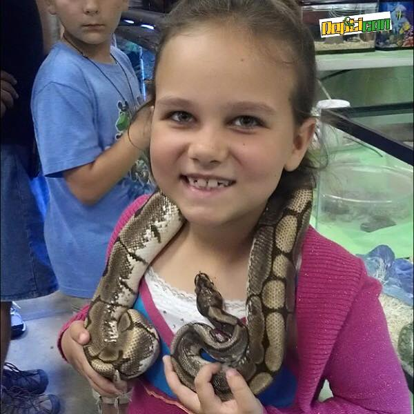 9. Repticon Reptile and Exotic Animal Convention, Southaven