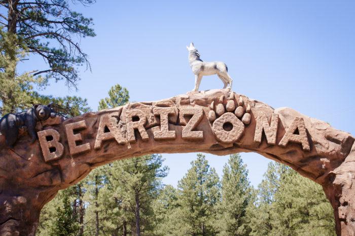 1. Bearizona is perfect for spotting Arizona wildlife.