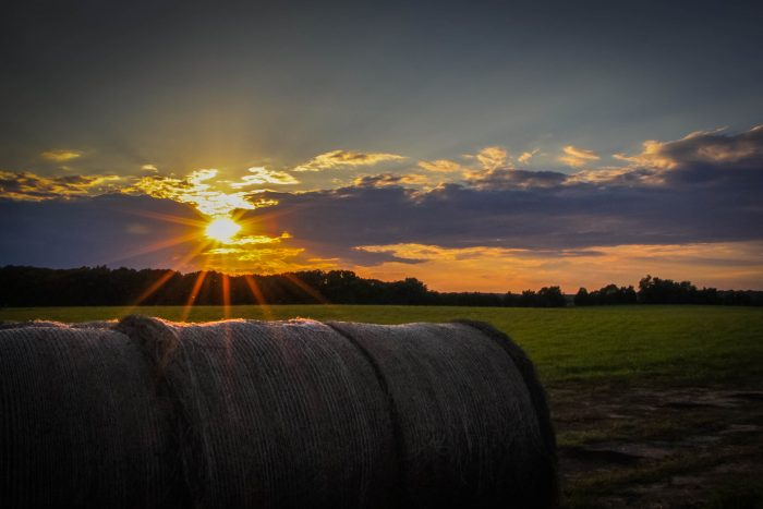 11. Watching a rural sunset