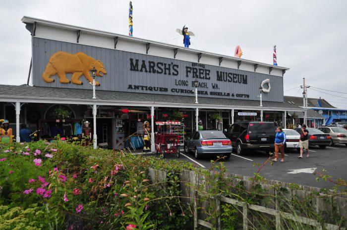 4 Score Weird Curiosities At Marsh S Free Museum