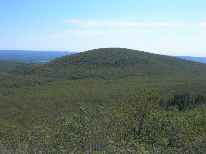 1. Bear Mountain (Salisbury)
