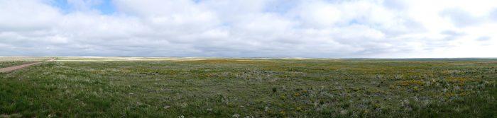 A Prairie Panorama