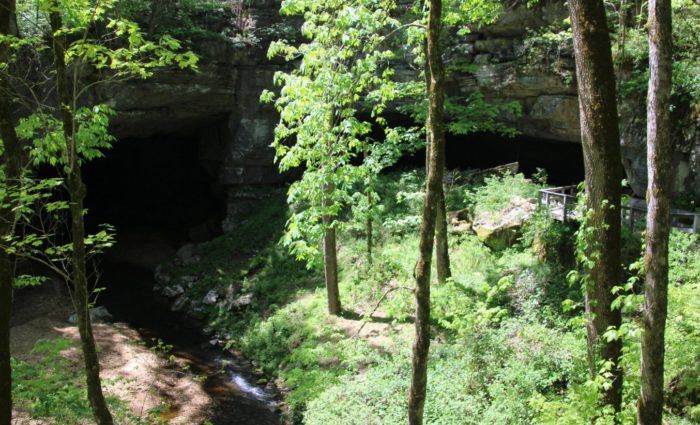 10. Take a hike to Russell Cave.