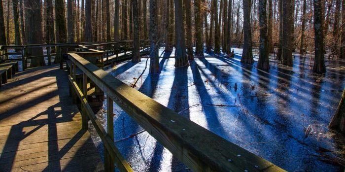 7. Wheeler National Wildlife Refuge Boardwalk
