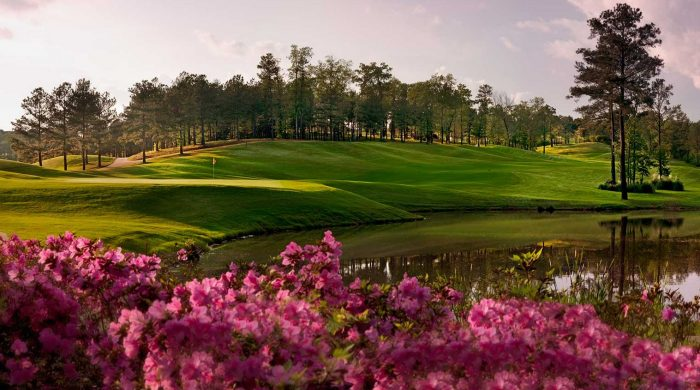 5. Feel like playing a round of golf now that you're retired? No worries! Alabama is home to several amazing golf courses.