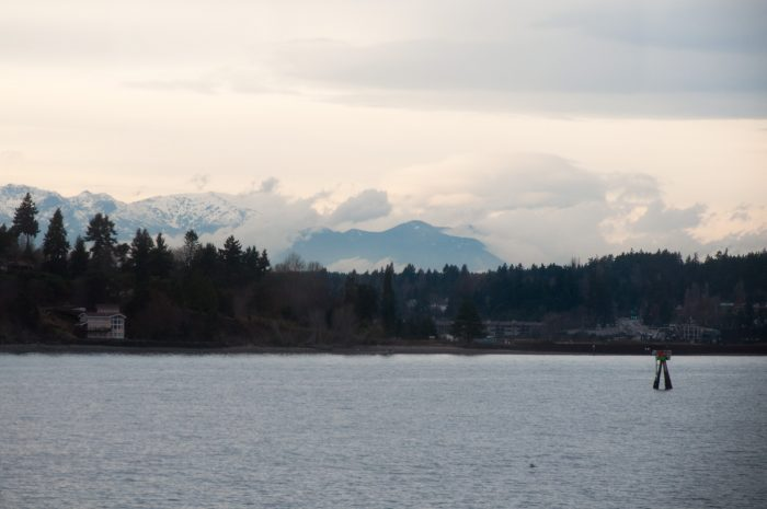 4.  Instead of taking a ferry to Bainbridge Island…