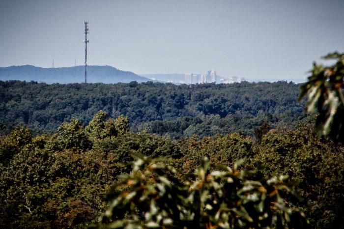 10. Bernheim Forest Lookout
