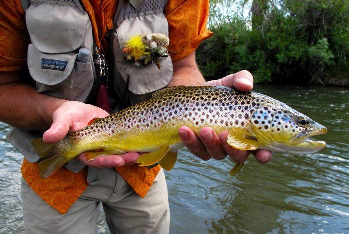 5. Fishing and hunting.