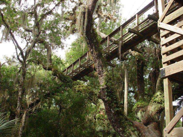 6. Florida: Canopy Walkway in Myakka River State Park