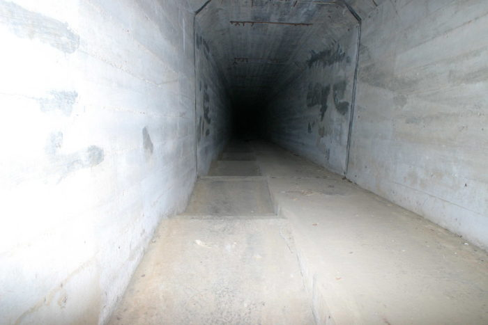 10. The tunnel is an attraction.