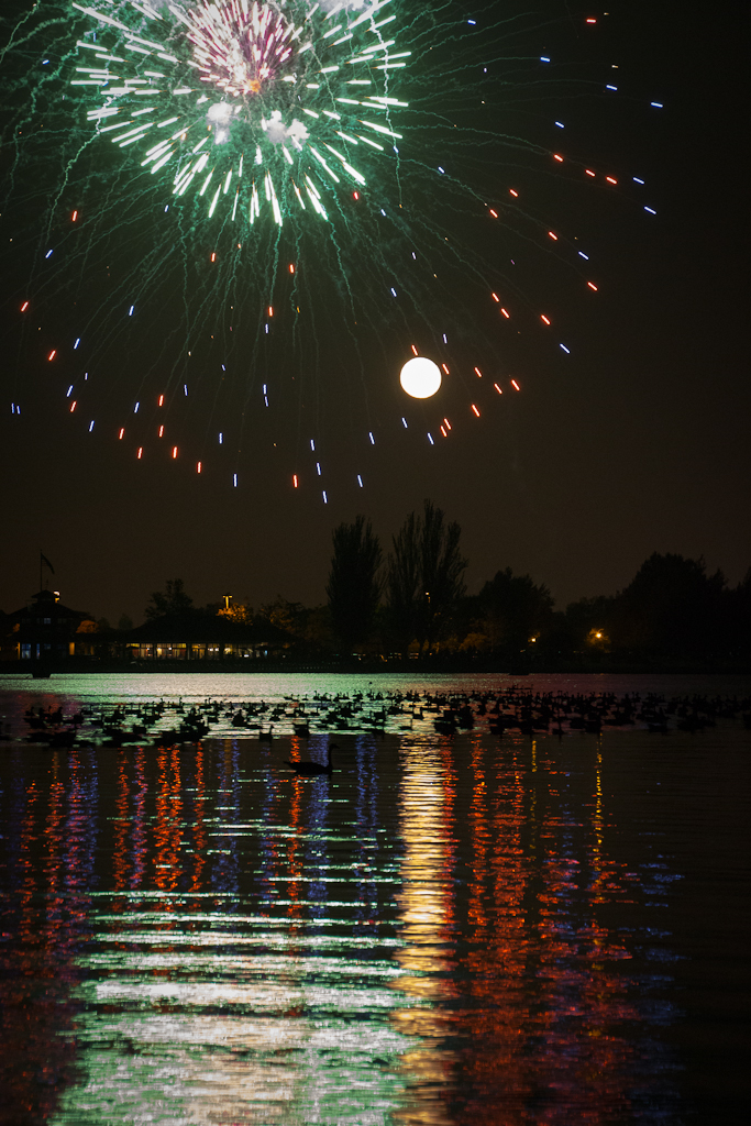 Ducks, Moon, and Fireworks at Shoreline