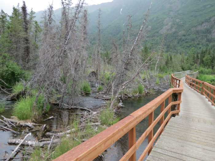 7. Rodak Trail – Eagle River Nature Center