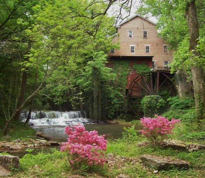 6. Falls Mill - Belvidere