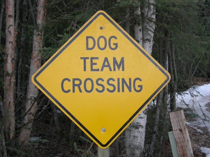 6. Must yield to the mushers and their athletes. There a lot of these signs up all over the state and we love it!