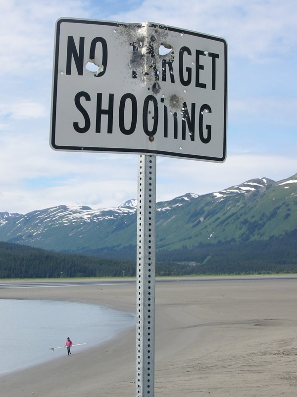 4. Nothing like taking the beautiful mountain and ocean scenery on the Turnagain Arm and shooting up a sign in a populated area. Yup, you're definitely in Alaska.