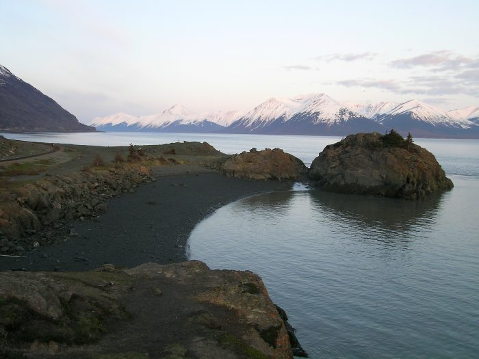 7. What time do the whales come out at Beluga Point?